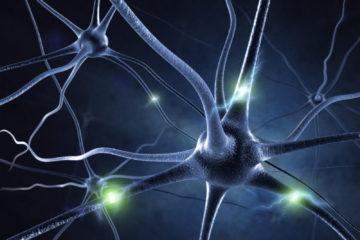 brain gears 4