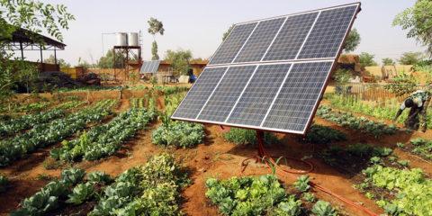 IRENA_SolarPanel